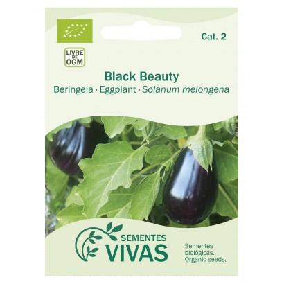 BERENJENA 'BLACK BEAUTY'...
